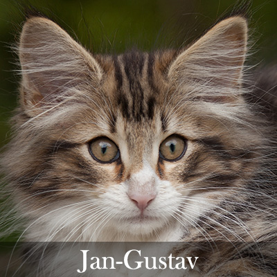 Jan-Gustav