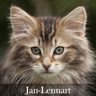 Jan-Lennart